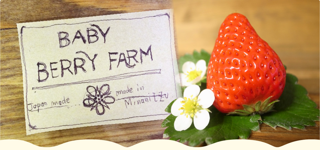Baby Berry Farm